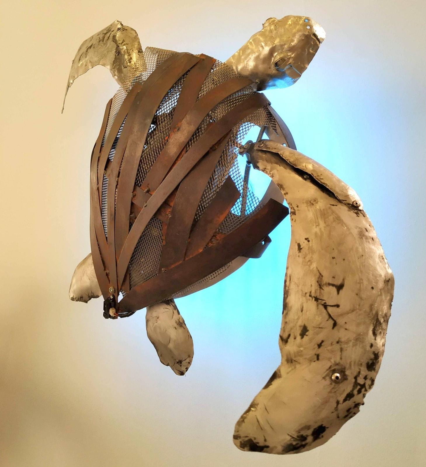Tortuga - Raul Beteta - N2 Galeria